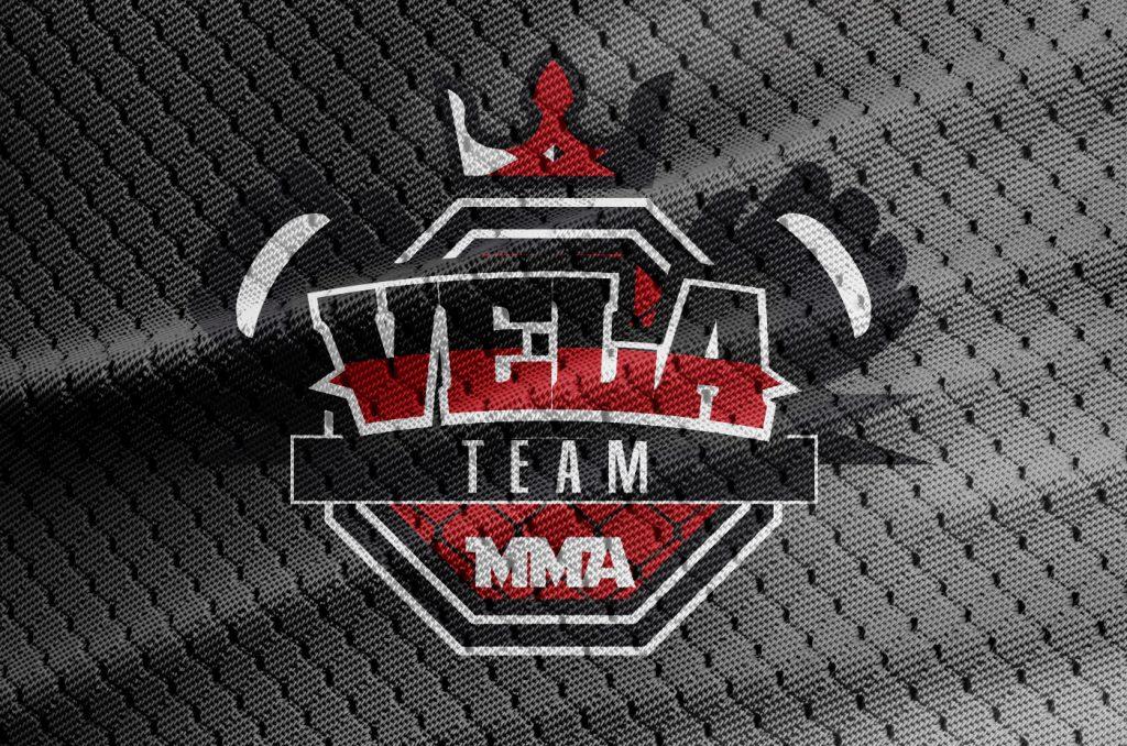 Vela Team